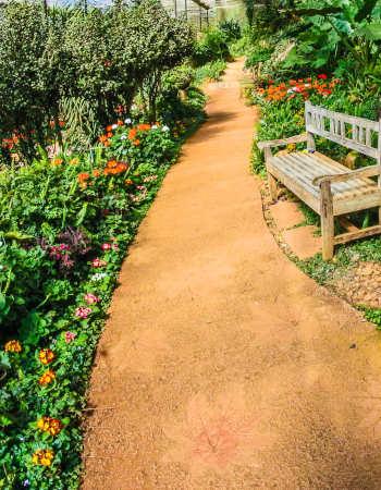 Paisajismo - Lindo parque para relajar lleno de flores